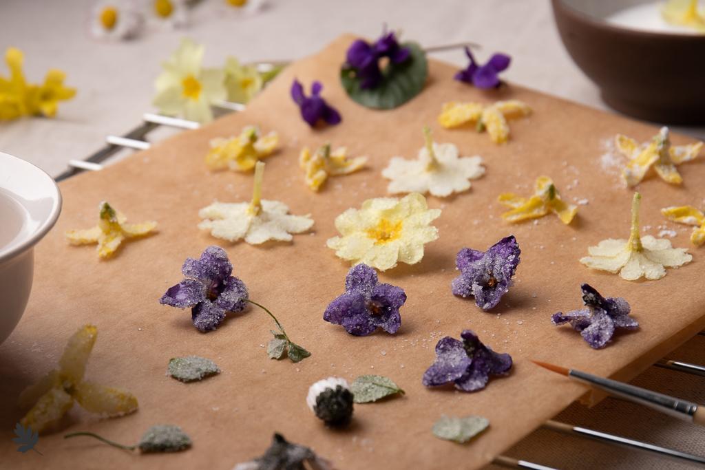 So kandierst du Veilchen und andere Blüten